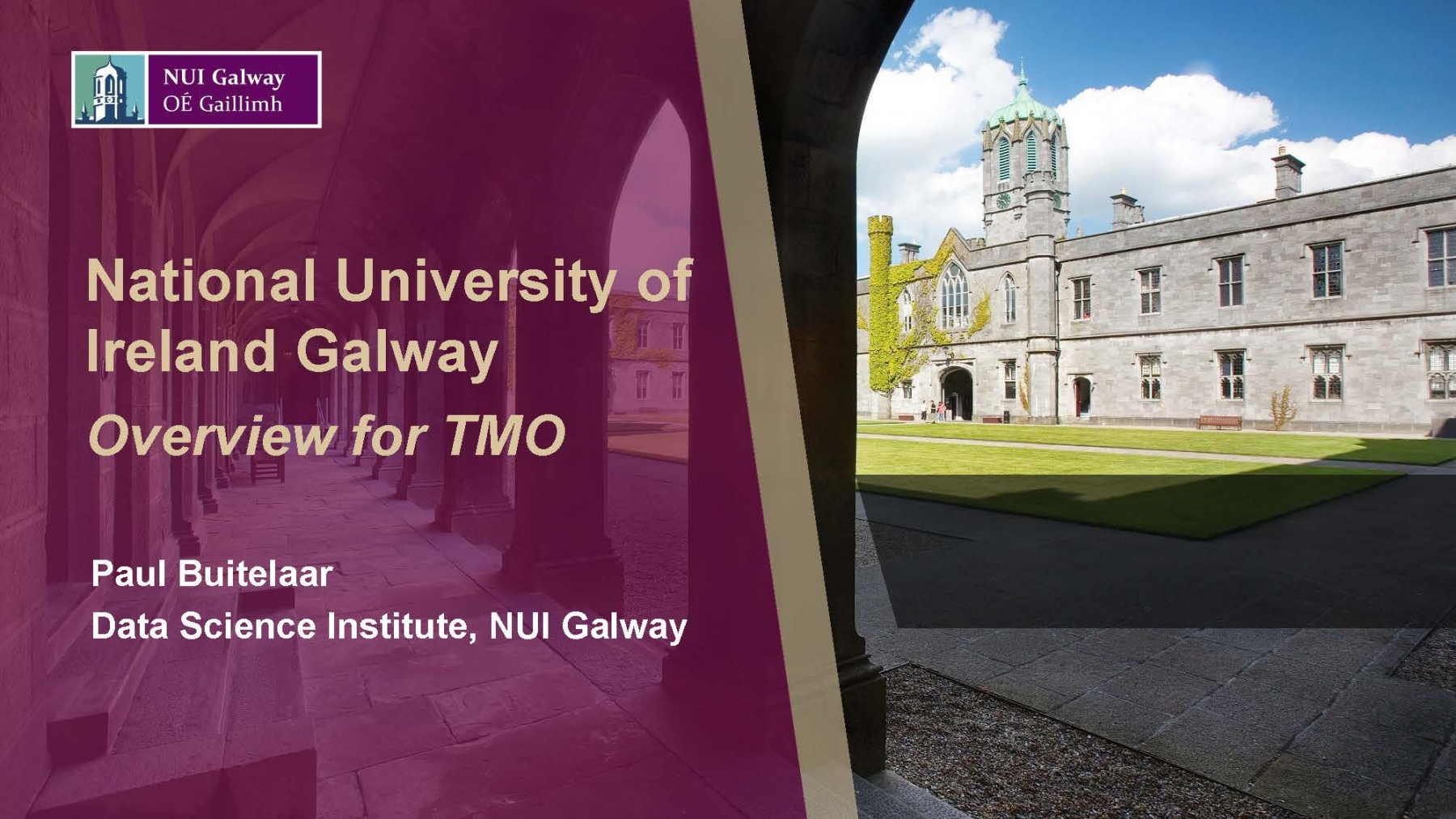 National University of Ireland Galway (pres. by Paul Buitelaar)